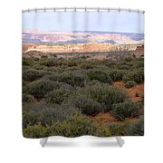 Distant View Shower Curtain