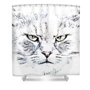 Disturbed Cat Shower Curtain
