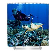 Diver And Green Sea Turtle Chelonia Shower Curtain
