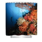 Diver Swims By A Soft Coral Reef Shower Curtain