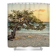 Divi Tree Sunset Shower Curtain