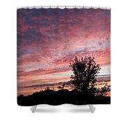 Divine Dawn Shower Curtain