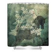 Divine Horse Whisperer Shower Curtain