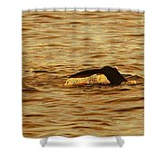 Diving Deep Shower Curtain