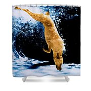 Diving Dog Underwater Shower Curtain