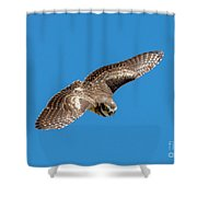 Diving For Home Shower Curtain