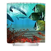 Diving Whales Shower Curtain
