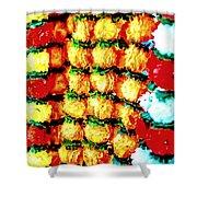 Diwali Decorations 4 Shower Curtain