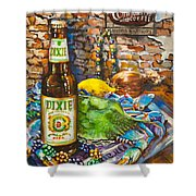 Dixie Love Shower Curtain by Dianne Parks