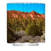 Dixie National Forest Shower Curtain