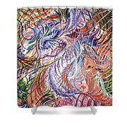 Dizzy Feathers Shower Curtain