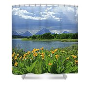 Dm9235 Mt. Moran From Oxbow Bend Shower Curtain