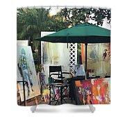 Dmrt Art Show Shower Curtain