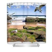 Do-00046 Birdie Beach Shower Curtain