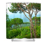 Do-00301 Pine Trees Forest In Aaraya Shower Curtain