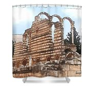 Do-00302 Ruins In Anjar Shower Curtain