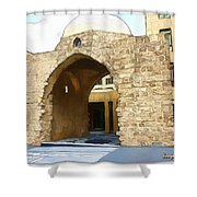 Do-00365 Historic Tomb In Downtown Shower Curtain
