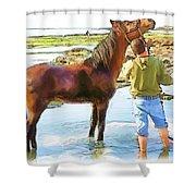 Do-00421 Washing Horse In Mina Shower Curtain