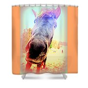I Will Love You If You Really Love Me But Do You   Shower Curtain