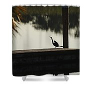 Dock Bird In Color Shower Curtain