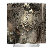 Doctrinal Entrapment Shower Curtain
