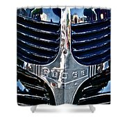 Dodge Hearse Shower Curtain