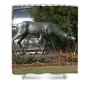 Doe And Fawn Shower Curtain