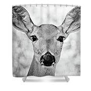 Doe Eyes - Bw Shower Curtain