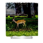 Doe - Oil Painting Print Shower Curtain
