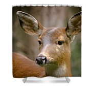 Doe With A Blaze Shower Curtain