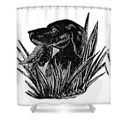 Dog, 19th Century Shower Curtain