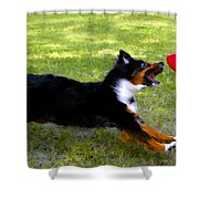 Dog And Red Frisbee Shower Curtain