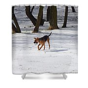 Dog And Winter Shower Curtain