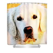 Dog Art - Golden Moments Shower Curtain