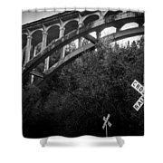 Dog Creek Bridge Railroad  Crossing Shower Curtain