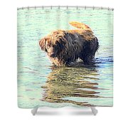 See The Sea Monster Coming Up From The Deep Dark Sea Looking For Something To Eat  Shower Curtain