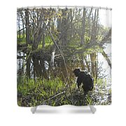 Dog Exploring Mississippi River Bank Shower Curtain
