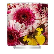 Dog Face Butterfly On Pink Mums Shower Curtain