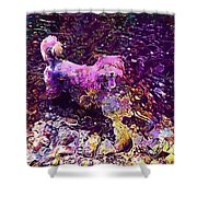 Dog Happy Nature River  Shower Curtain