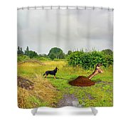 Dog Heaven - Abbie's Edit Challenge 3 Shower Curtain