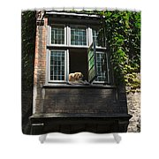 Dog In A Window Above The Canal In Bruges Belgium Shower Curtain