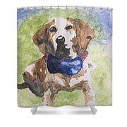 Dog In Bow Tie Shower Curtain