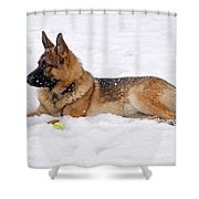 Dog In Snow Shower Curtain by Sandy Keeton