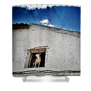 Dog In The Window Shower Curtain