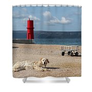 Dog Lying On The Beach In Front Of Red Lighthouse Of Cres Shower Curtain