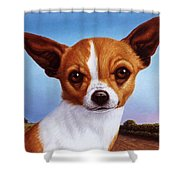 Dog-nature 3 Shower Curtain