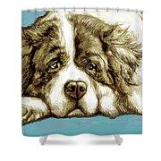 Dog -  New Pop Art Poster Shower Curtain