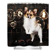 Dog On A Dark Background In The Style Of Steampunk Shower Curtain