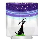 Dog Star  Shower Curtain
