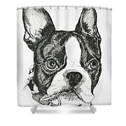 Dog Tags Shower Curtain
